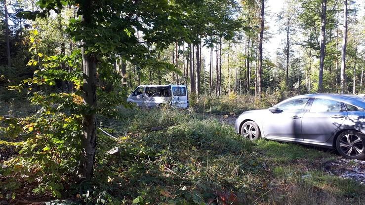 Nielegalny wjazd do lasu