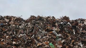 Tony śmieci z Niemiec miały trafić do Łodzi. Transport zatrzymali celnicy