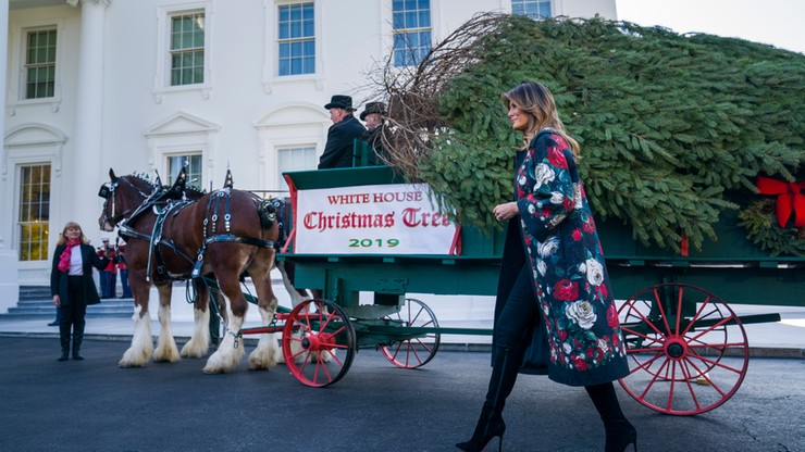 Biały Dom ma już choinkę na Boże Narodzenie. To 5-metrowe drzewko z Pensylwanii