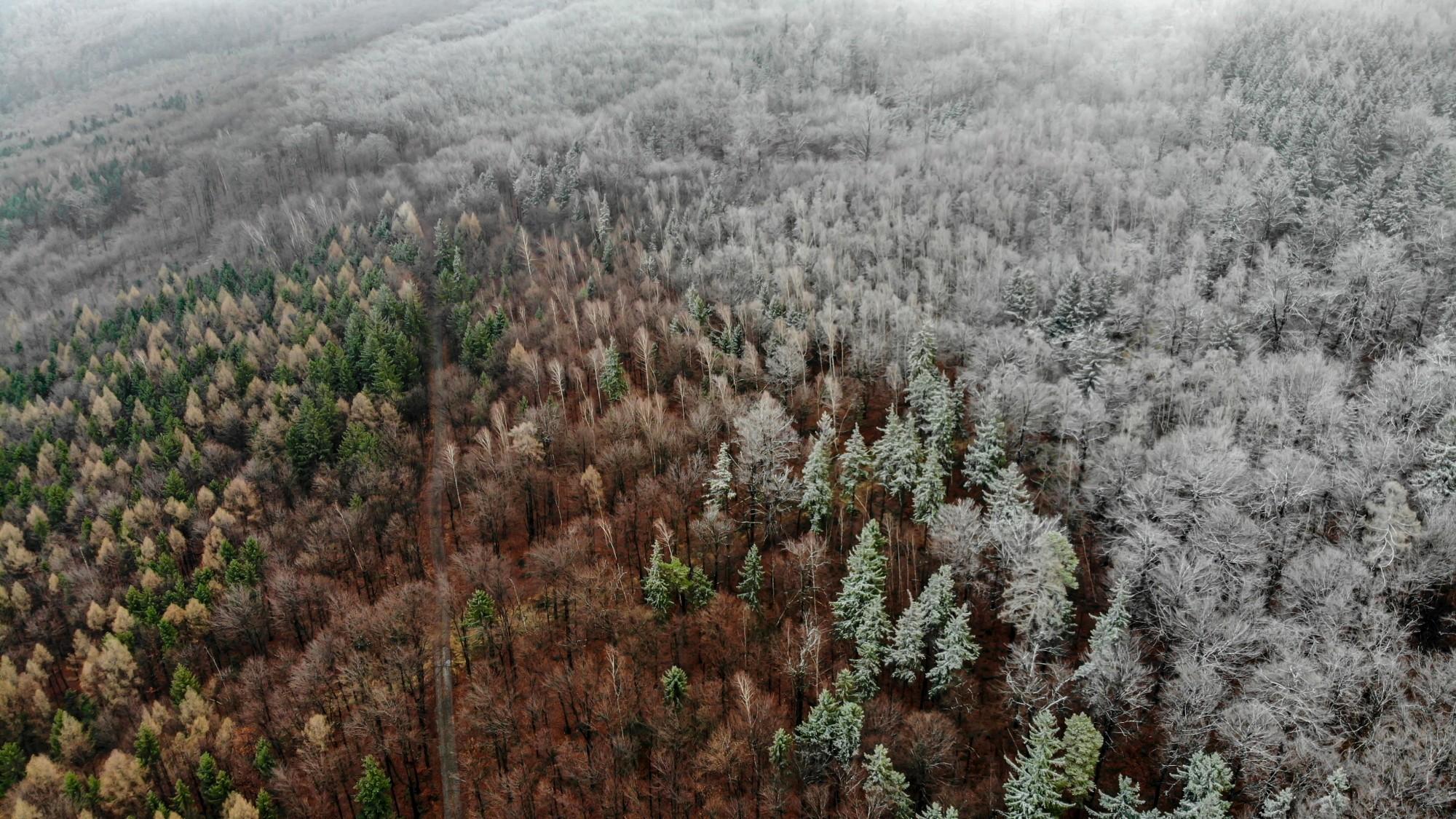 Niesamowita Polska z lotu ptaka - zdjęcie 2