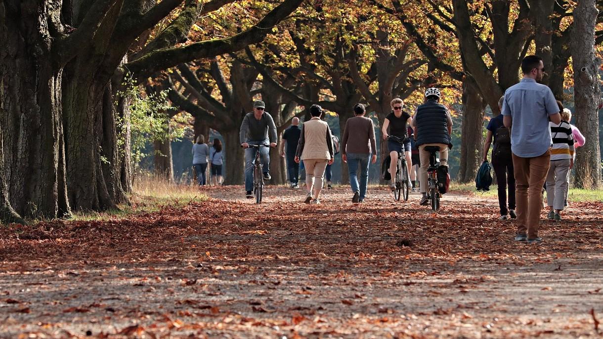 Może to wydać się dziwne, ale szybkość chodzenia ma wpływ na naszą długość życia