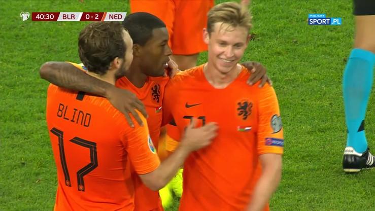 Cudowny strzał Wijnalduma! Holandia wygrała z Białorusią