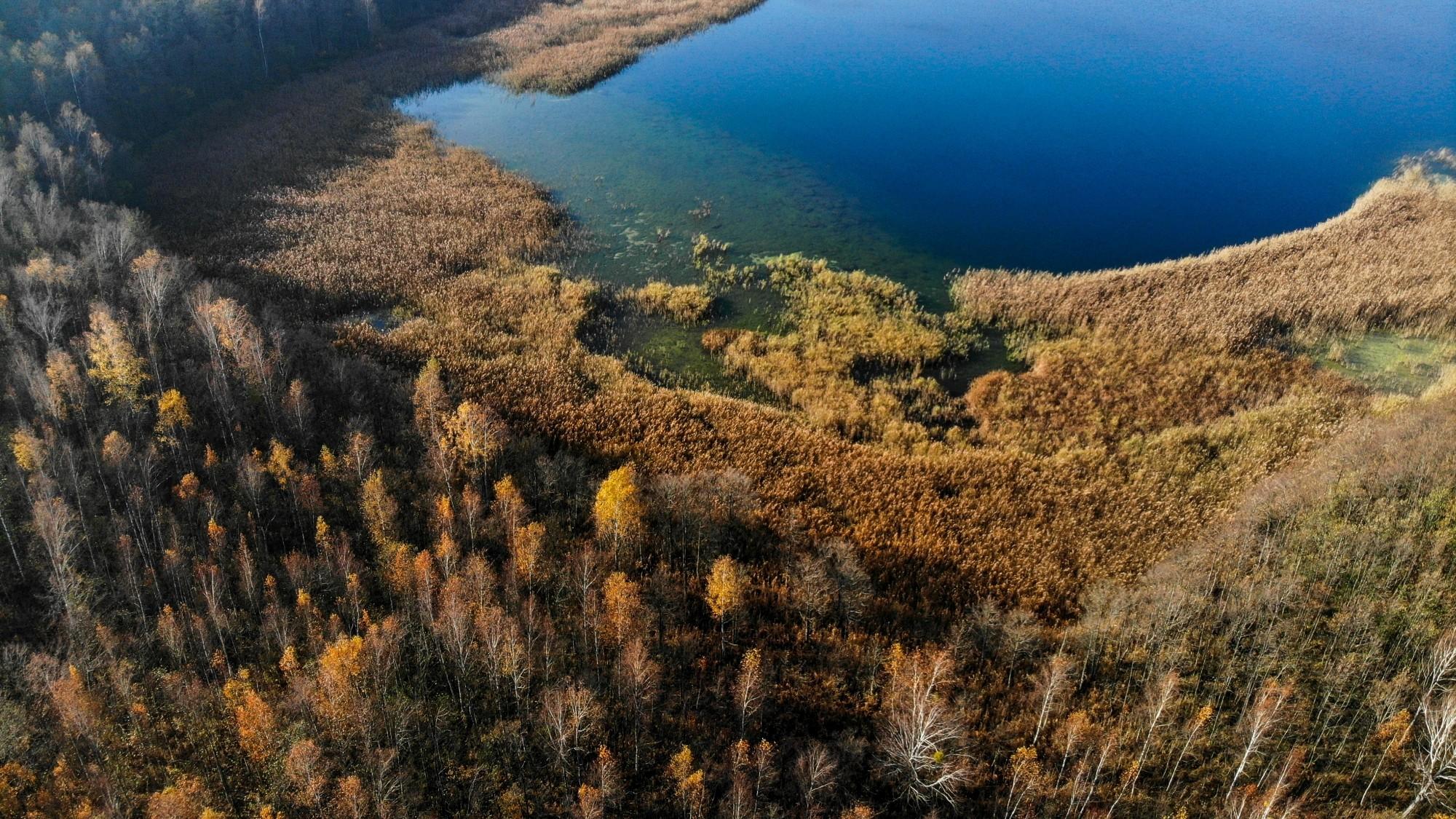 Jesień na nizinach z lotu ptaka - zdjęcie 1