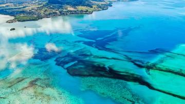 Katastrofa ekologiczna na Mauritiusie. Wyciekły setki ton ropy
