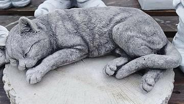 Z grobu dziecka skradziono figurkę kotka. Rodzina apeluje o zwrot