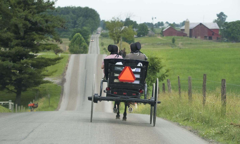 Amisze zazwyczaj nie prowadzą samochodów